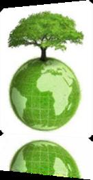 Vign_Environnement